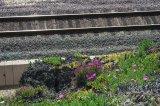 12_tracks